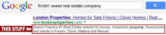 'Meta Description' is the block of text that appears below your site on search results.